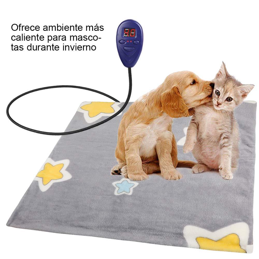 alfomabra mascotas.jpg